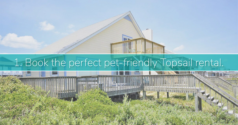 Dog Friendly Topsail Island Rentals